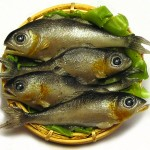Kiva Atkinson Miniature Fish 150x150 Kivas Mini Foods Look Good Enough to Eat