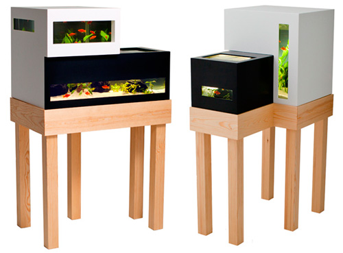 Archiquarium Designed by Karl Oskar: Fish Tank to Modern Dollhouse?